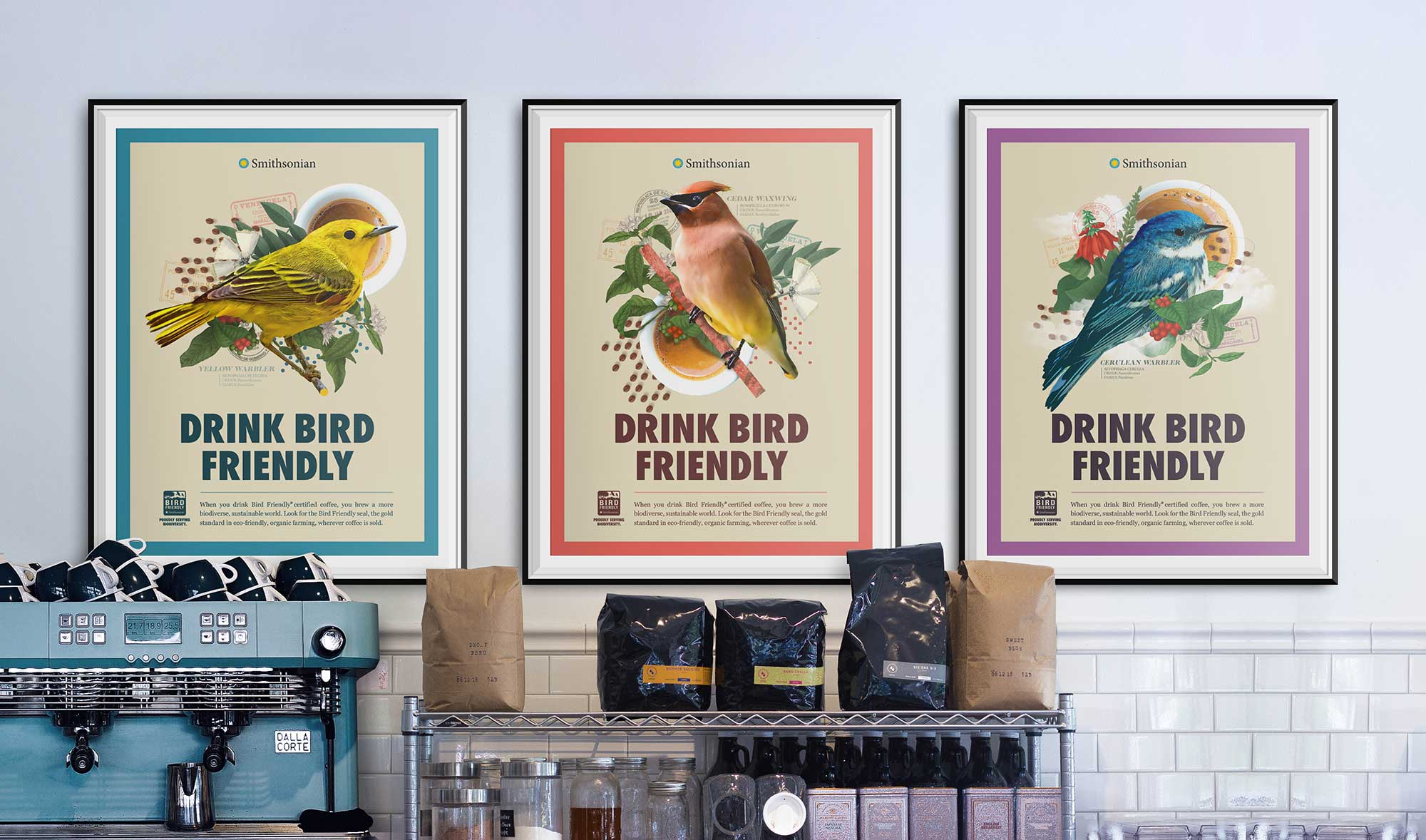 Smithsonian Bird Friendly Coffee - Poster Design